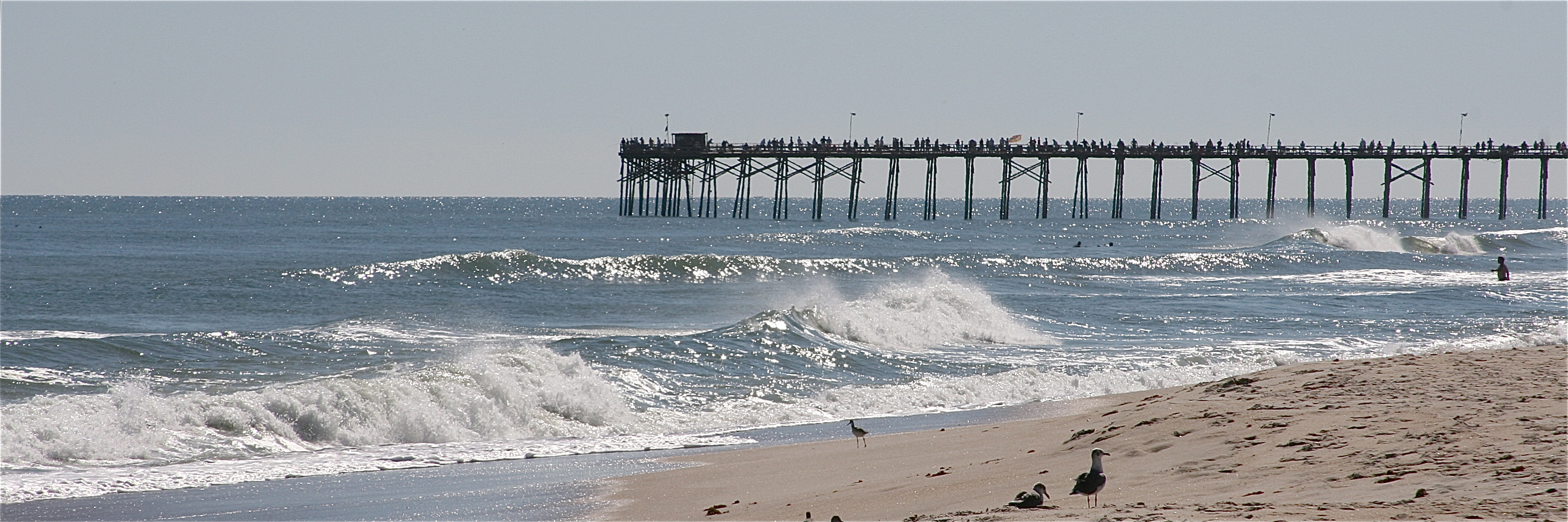 pier-beach.jpg